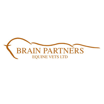 Brain Partners