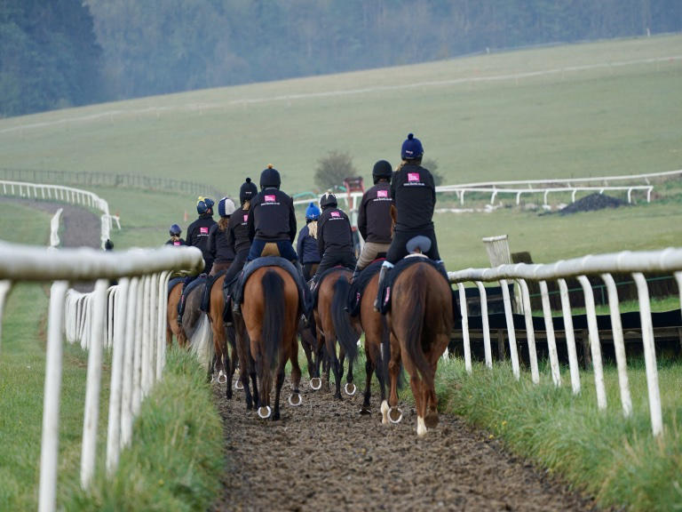 Advanced synthetic all-weather gallops