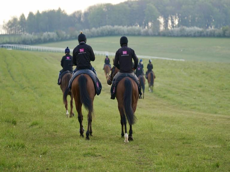 Private gallops accessed via private land