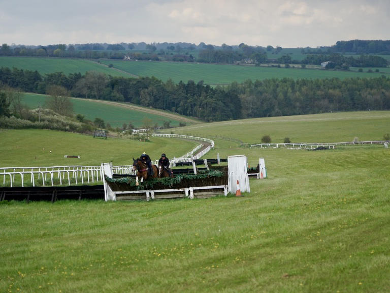Superb viewing of gallops and schooling fences