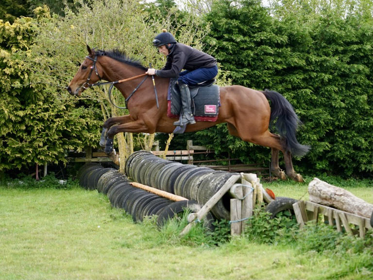 Specialist pre-trainers and jumping experts